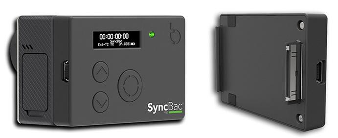 Large_syncbac