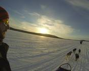 Pod_thumb_gopro_hero3_black_mushing