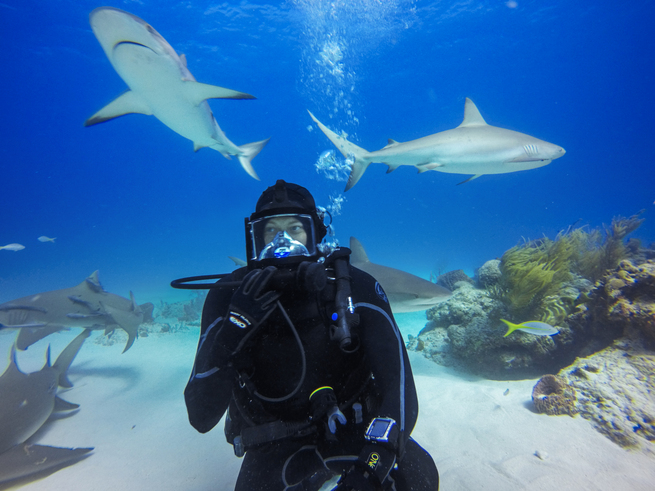 TUNE IN GoPro And Periscope Under The Sea
